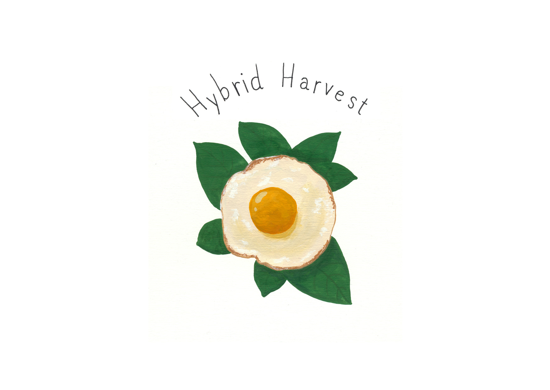 Hybrid Harvest Zine. A collection of fantastical plants you might spot in your dreams.